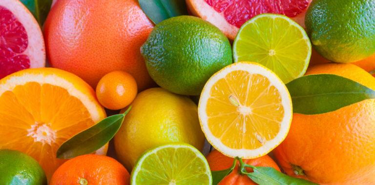 Blandade citrusfrukter i vacker sammansättning, citron, apelsin, lime och grapefrukt