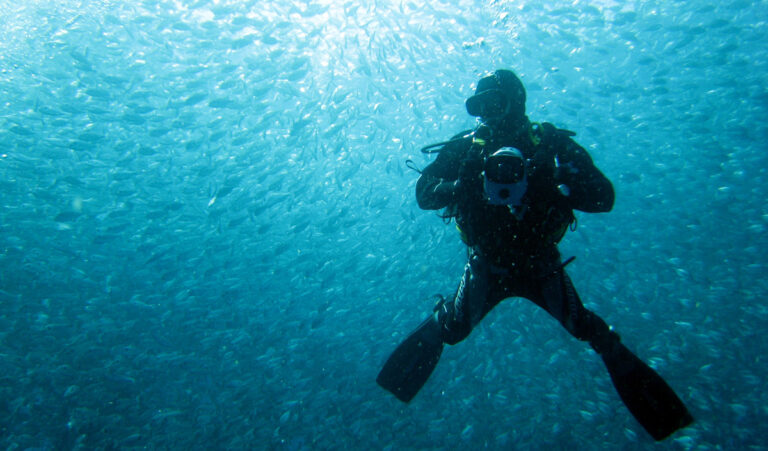 Dykare med kamera i hav fyllt med små fiskar.